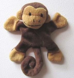 Taming 'Bodi', the Monkey mind
