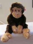 Monkey Mind chatter