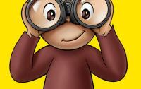 Curious George observes