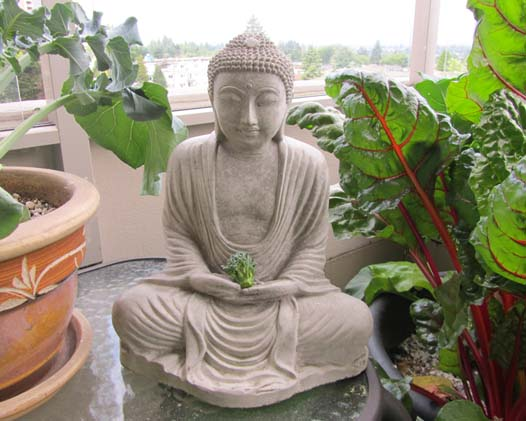 buddha with broccoli